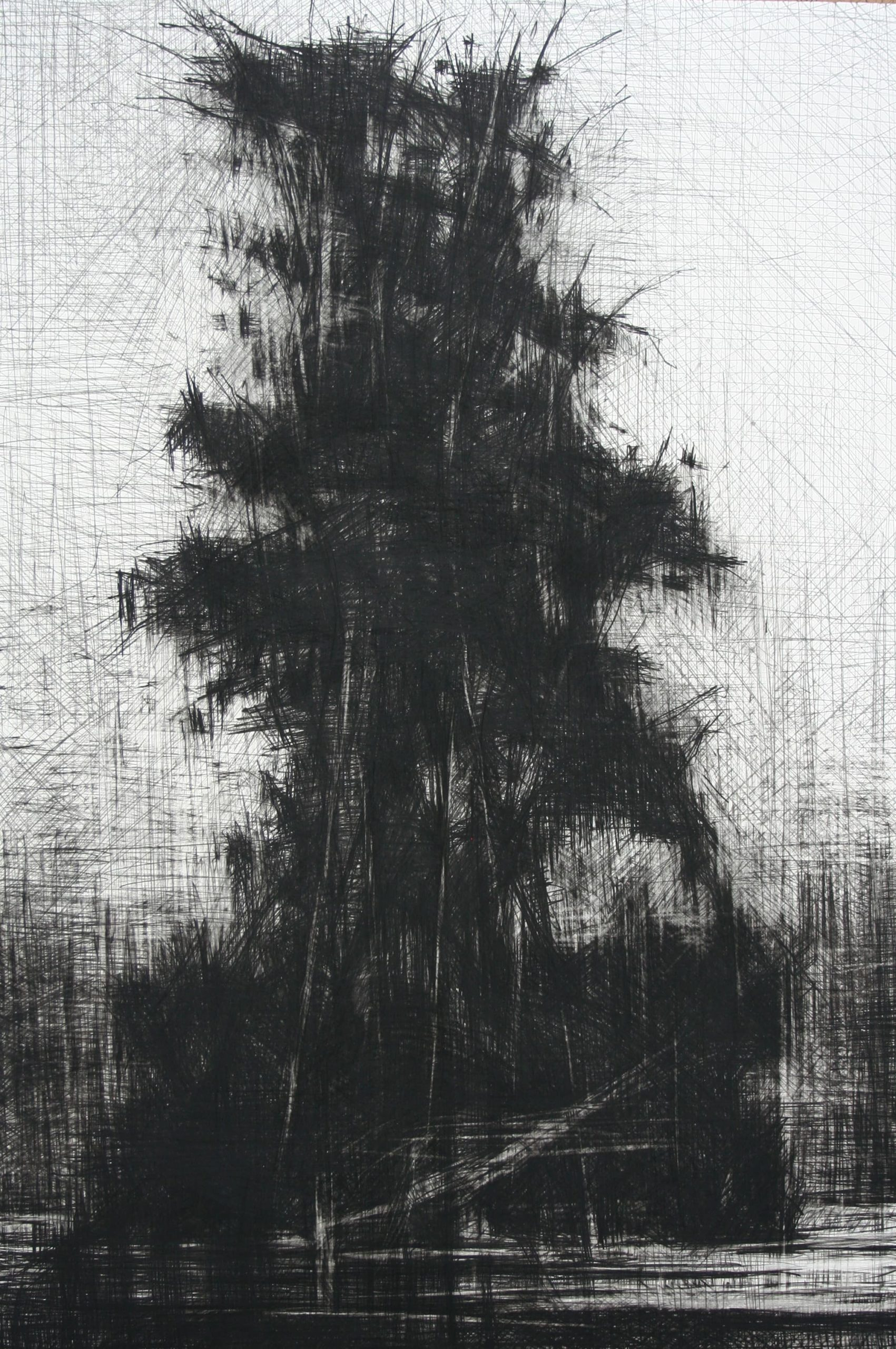 Artistas - Galería Alba Cabrera